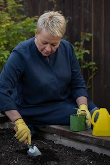 美しい女性庭師は植える前にシャベルで肥沃な土壌に穴を作る