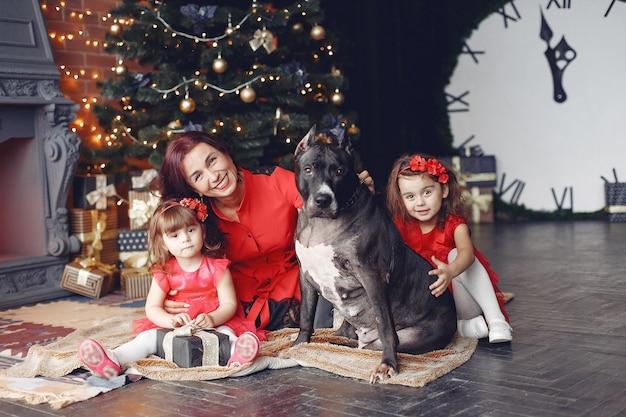 赤いドレスを着た美しい女性。家にいる家族。娘と母。犬を飼っている人。