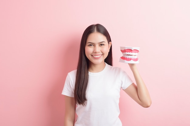 Beautiful woman is holding teeth artificial model for demonstration dental clean