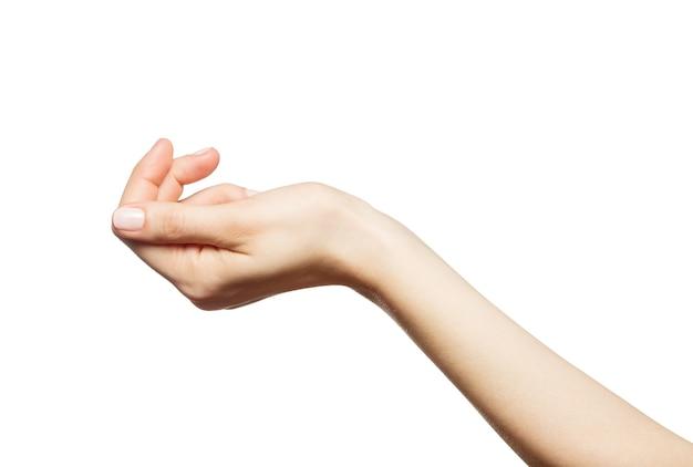 흰색 바탕에 아름 다운 여자의 손