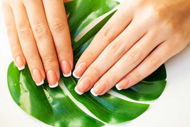 Beautiful woman's nails with french manicure, in beauty studio