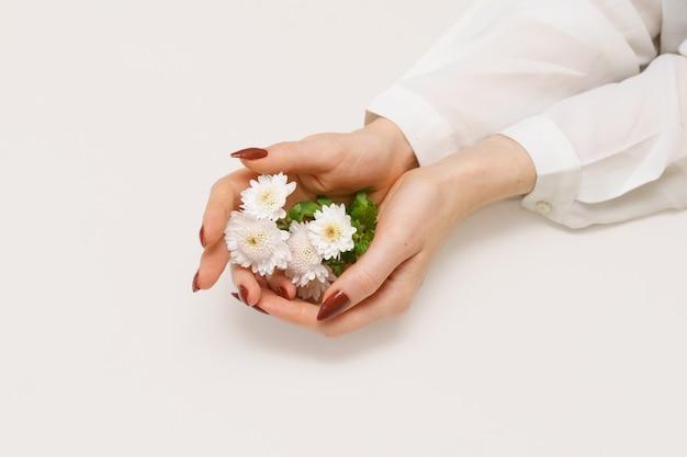 흰 국화와 아름 다운 여자의 날씬한 손