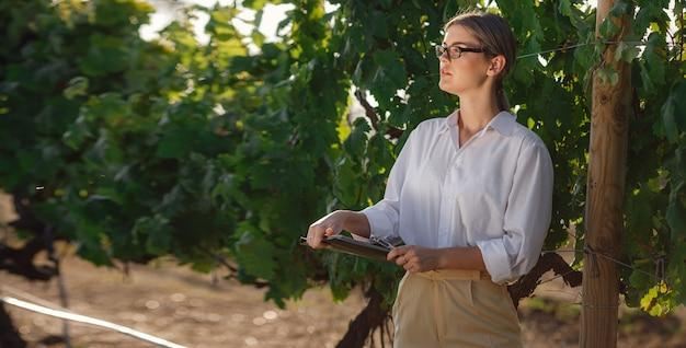 Сомелье красивая женщина проверяет виноград перед сбором урожая. идентификатор биологической концепции, органические продукты питания и марочное вино ручной работы