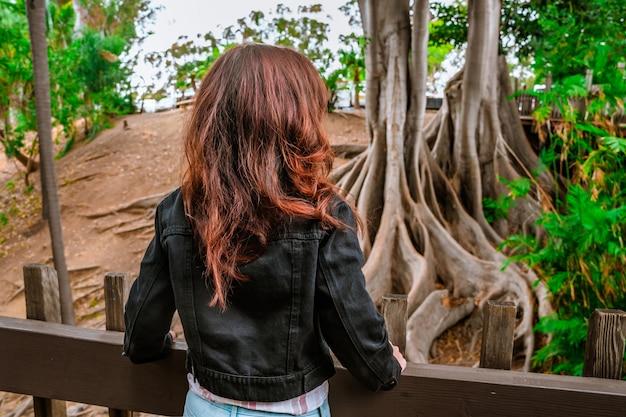 샌디에고 발보아 파크에서 거대한 뿌리를 가진 나무가 있는 열대 우림을 걷는 아름다운 여성