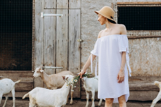 Beautiful woman and white dress and in a beige hat among goats on an eco farm