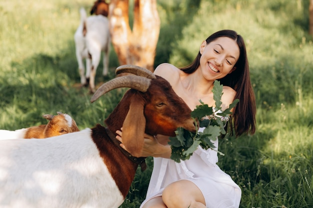 Beautiful woman in a white dress feeds goats and their kids greens on a eco farm.