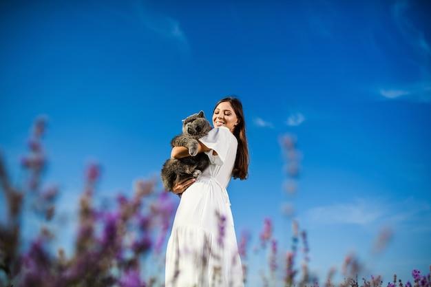 日没のラベンダー畑でイギリスの猫と美しい女性。幻想的な夏の気分。