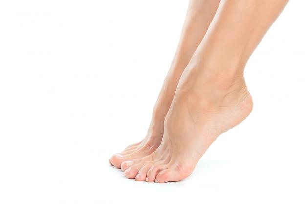 Красивые женские ноги на белом фоне
