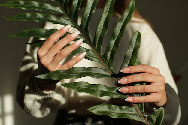 섬세한 매니큐어로 아름다운 여성의 손에 녹색 식물이 있습니다. 고품질 사진