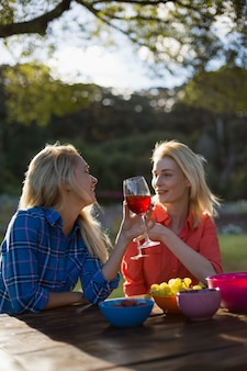 Beautiful women talking while having a glasses of red wine