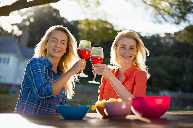 Beautiful women toasting a glasses of red wine
