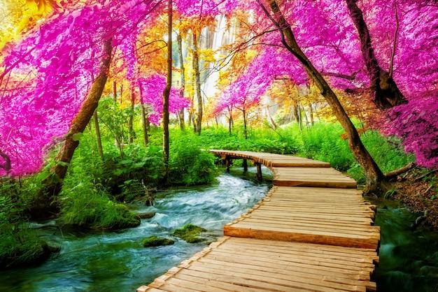 Красивый деревянный путь в озере plitvice, хорватии.