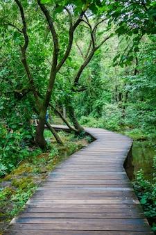 녹색 크 르카 국립 공원, 크로아티아의 아름다운 나무 통로