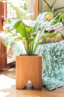 植物と美しい木製ポット
