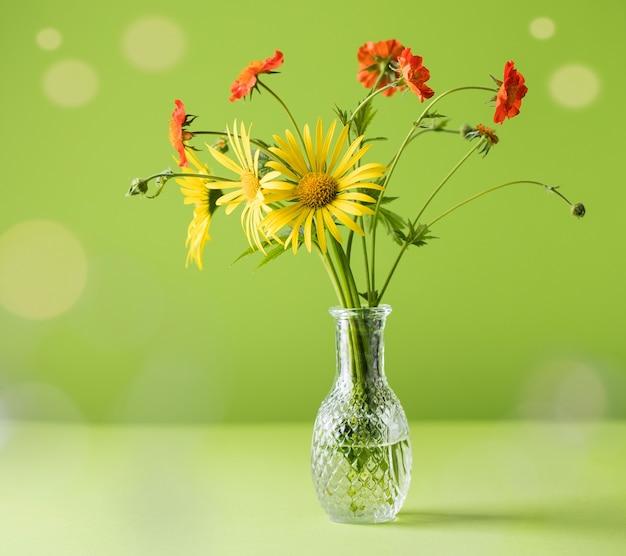 Красивые желтые и красные полевые цветы на зеленом