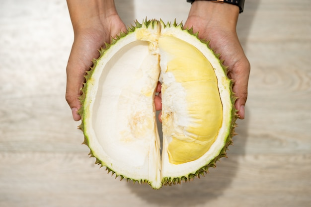 Beautiful yellow durian, ready to eat in the hands of consumers