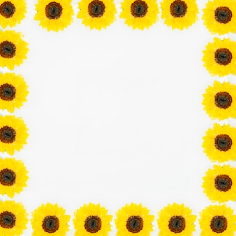 Beautiful yellow flower forming white frame