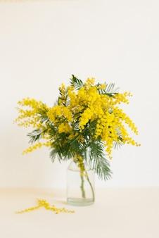 春のガラスの花瓶に美しい黄色のミモザの花の花