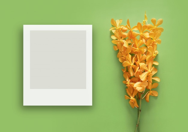 Beautiful yellow orchid minimal style