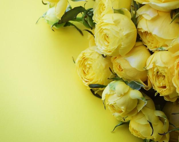 Красивая желтая пионовидная роза. букет кустовых роз на желтой стене. копировать пространство