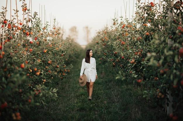 白いドレスを着た美しい若いブルネットの女性は、秋の季節にリンゴの庭を歩きます。