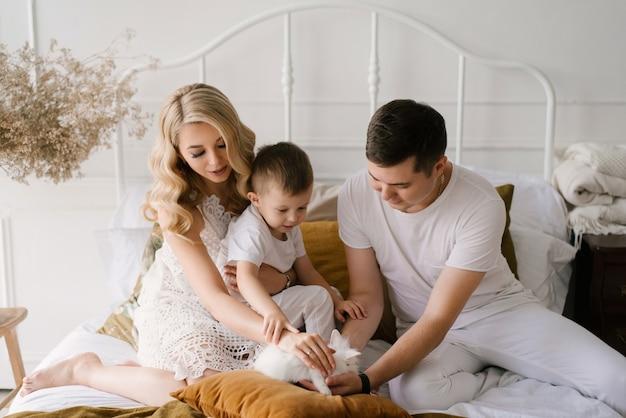 白い服を着た美しい若い家族の男性の女性と息子は、自宅でウサギと一緒にベッドで遊ぶ
