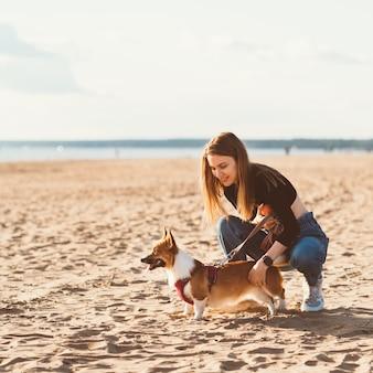 コーギーの子犬をなでる美しい少女
