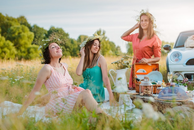 Beautiful young girlfriend girls women on a picnic in the summer fun to celebrate and drink wine.