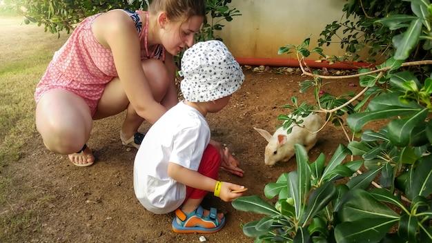 農場でかわいい白いウサギに食べ物を与える小さな子供を持つ美しい若い母親