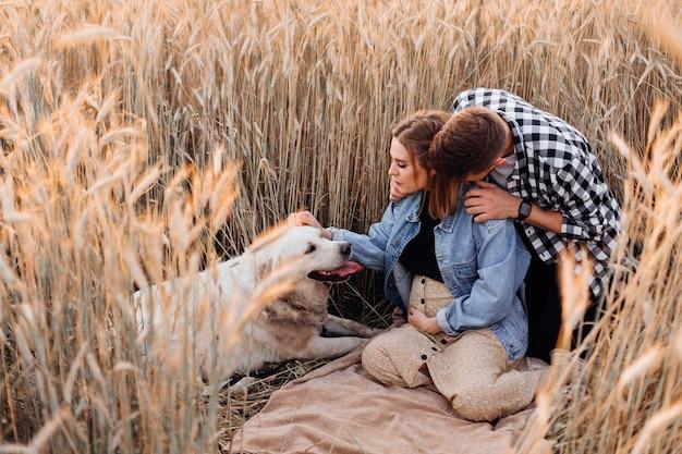 그들의 개와 함께 아름 다운 젊은 임신 부부는 밀밭 사이에서 자연에서 행복하게 시간을 보내고 있습니다. 가족과 임신. 사랑과 부드러움. 행복과 평온.