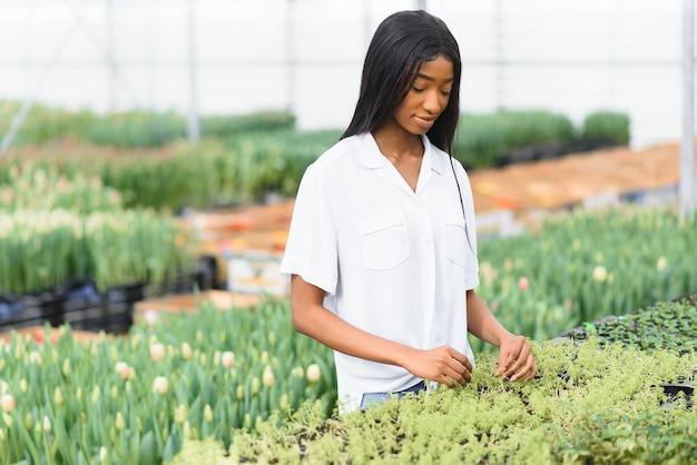 美しい若い笑顔のアフリカ系アメリカ人の女の子、温室の花を持つ労働者。