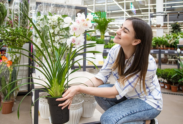 Beautiful young woman in a flower shop and choosing flowers. the concept of gardening and flowers .