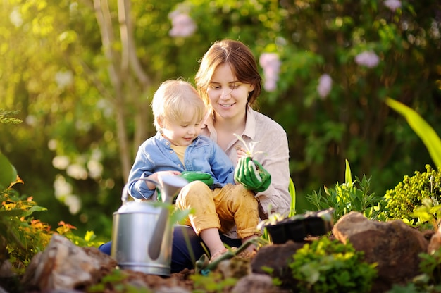 Beautiful young woman and her cute son planting seedlings in bed in the domestic garden at summer day