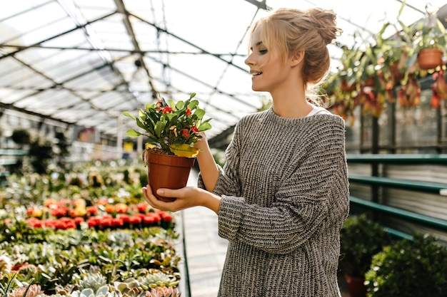 Beautiful young woman in knitted dress holding brown pot with plant and posing in greenhouse.