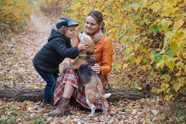 かわいい男の子と美しい若い女性は、秋の公園でビーグル犬を歩きます。