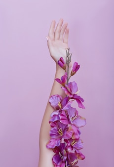 Beauty hand of a woman with red flowers lies on pink
