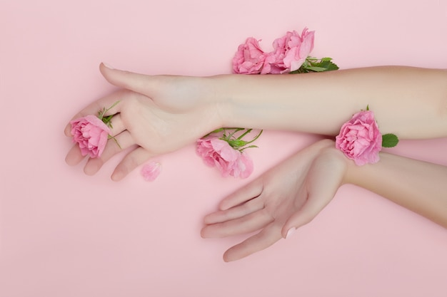 Beauty hand of a woman with red flowers lies on table, pink paper