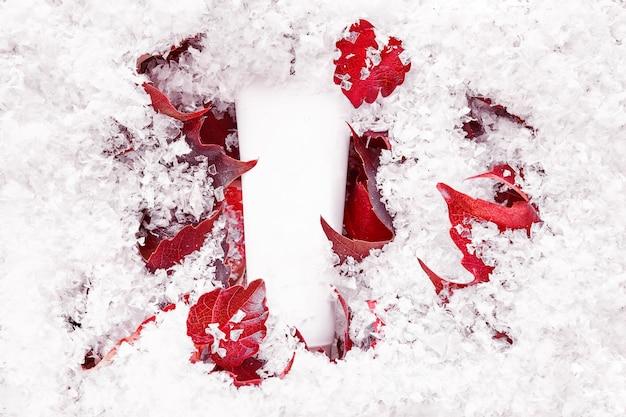 뷰티 스파 의료 스킨 케어, 붉은 잎에 로션 제품. 튜브를 모의합니다. 화장품 포장 모형