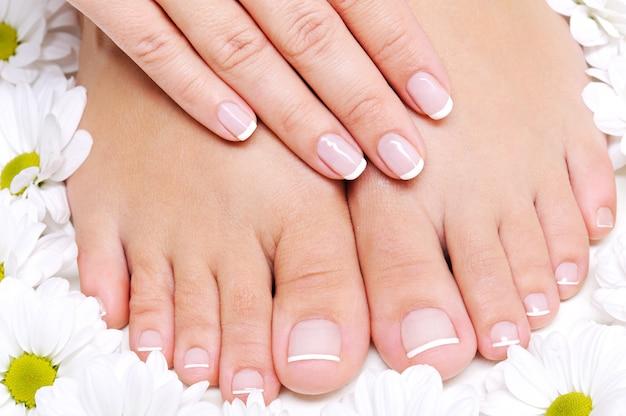 주변에 카밀레 꽃이있는 여성 발의 미용 치료
