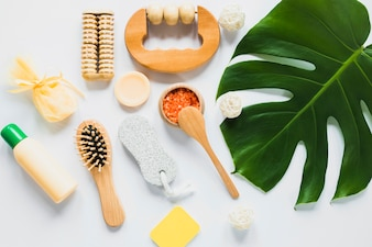 Beautycare concept with palm tree leaf