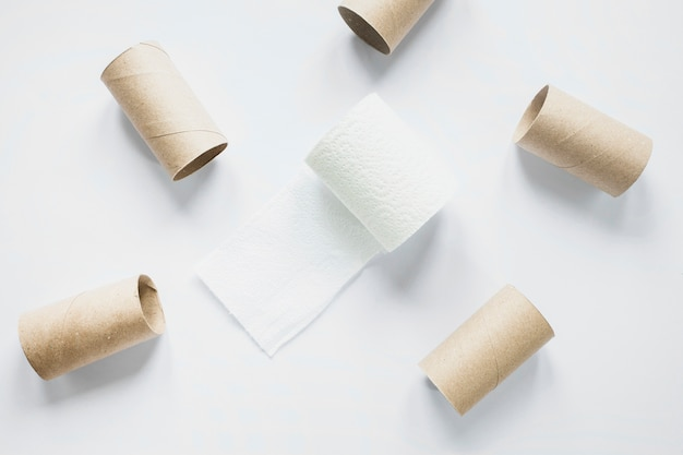 Beautycare concept with toilet paper rolls