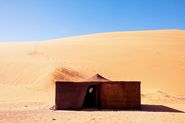 Бедуинская палатка. традиционный образ жизни в марокко, африка
