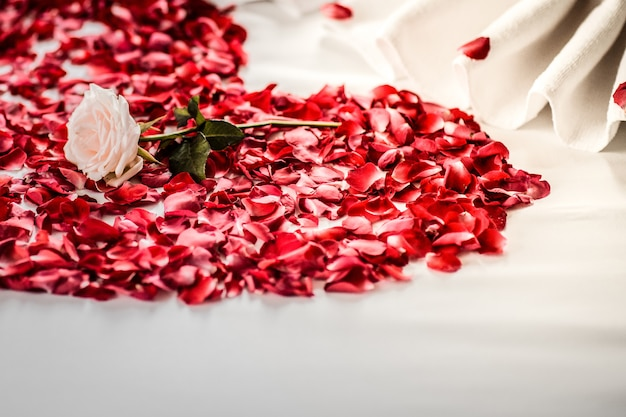 Bedroom bride and groom, luxury bedroom, white linen, white swan, red petal, red heart
