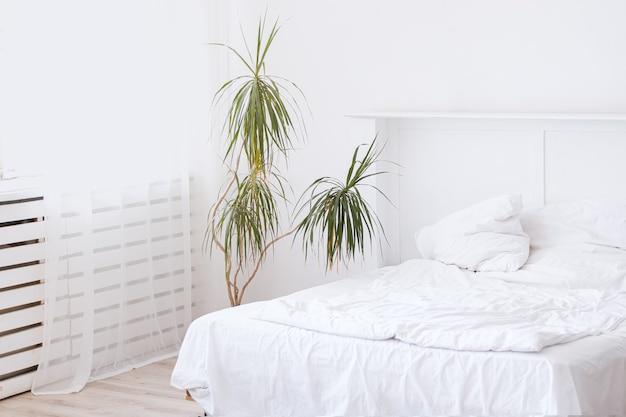 白いベッドと大きな緑の屋内花と寝室のインテリア。睡眠ベッドの準備ができている白いきれいなベッドルーム。