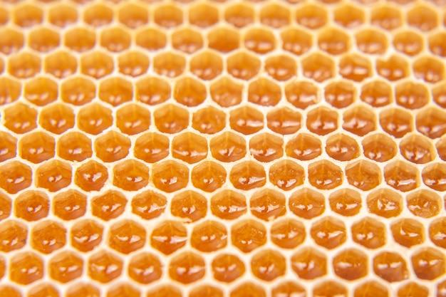 빗에 벌 신선한 꿀. 배경과 텍스처입니다. 비타민 자연 식품. 꿀벌 작업 제품