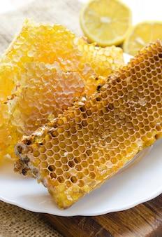 Bee honeycombs with honey.