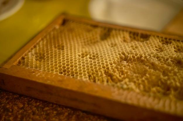 Улей специально создан для пчеловодства для производства настоящего меда.