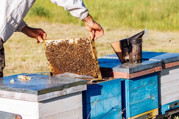 Пчеловод за работой.