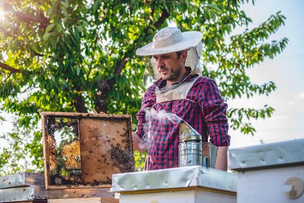 Beekeeper checking beehives