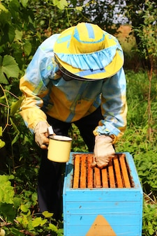 양봉가가 꿀벌에게 설탕 시럽을 공급합니다.